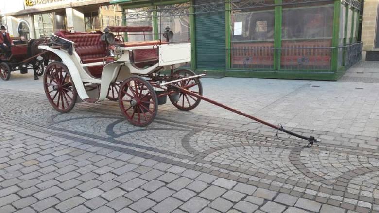 Na wrocławskim Rynku padł koń