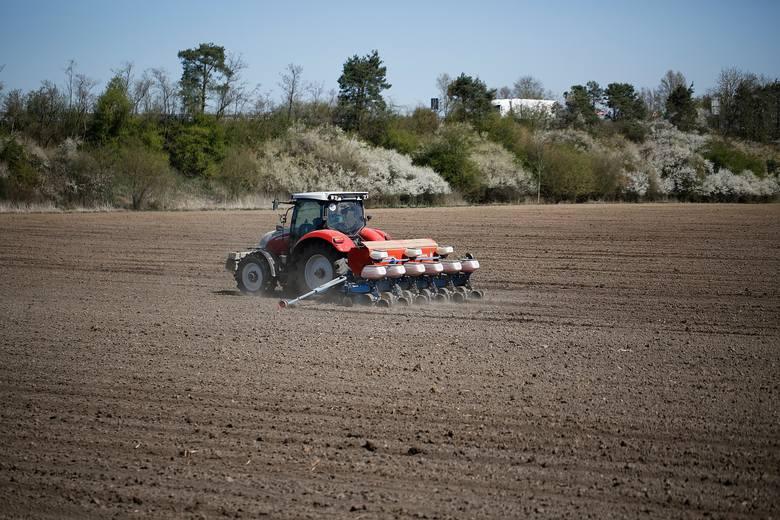 Ceny usług rolniczych w Kujawsko-Pomorskiem. Tyle średnio płaci rolnik wiosną 2021