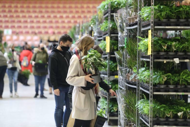 W sobotę (8 maja) w godz. 8-20 i w niedzielę (9 maja) 8.00-18.00 w hali Arena przy Toruńskiej zrobi się zielono, a to za sprawą Festiwalu Roślin, czyli
