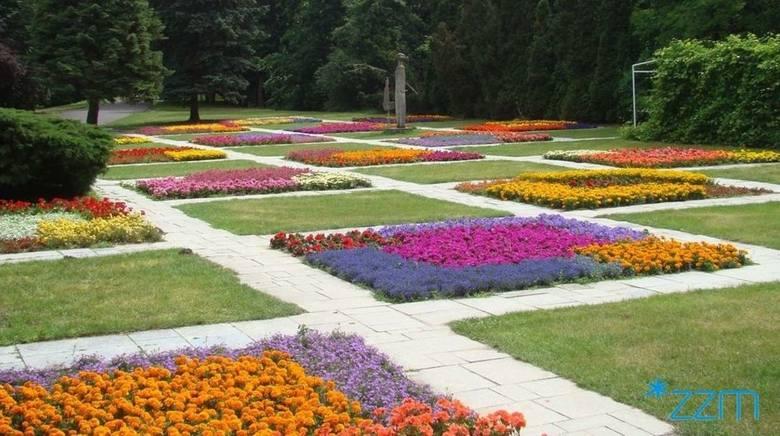 Kwiatowe ogrody na poznańskiej Cytadeli zachwycają wyglądem i zapachem. Zarząd Zieleni Miejskiej posadził tam tysiące kwiatów. Widok jest naprawdę imponujący.