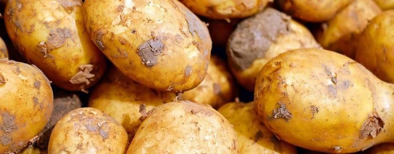 Tyjesz? To nie sprawka ziemniaka, a jemy ich coraz mniej