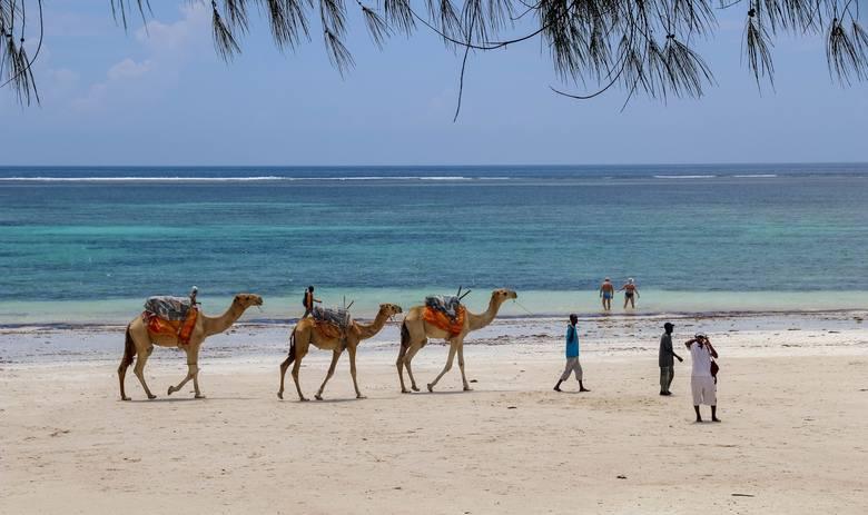 KENIA I TANZANIA: tylko loty czarterowe.KENIA1. MombasaTANZANIA1. Zanzibar