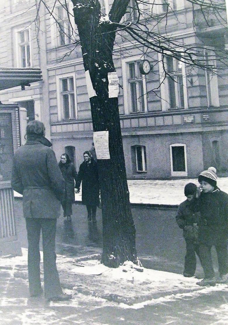 Lipy na skraju al. Wojska Polskiego prze dworcem PKP jako słupy ogłoszeniowe w 1973 roku