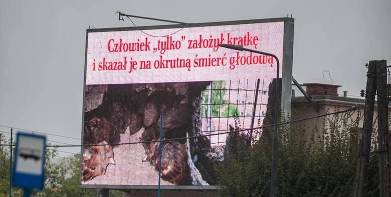 Zapraszamy na plus.pomorska.pl