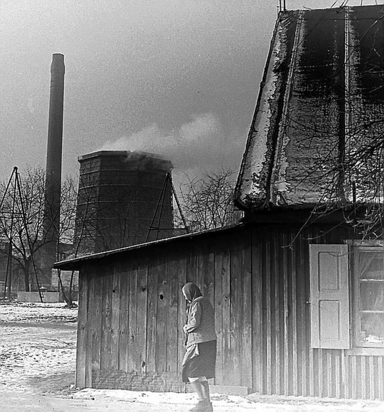 Kunitzerowskie domy drewniane na Widzewie