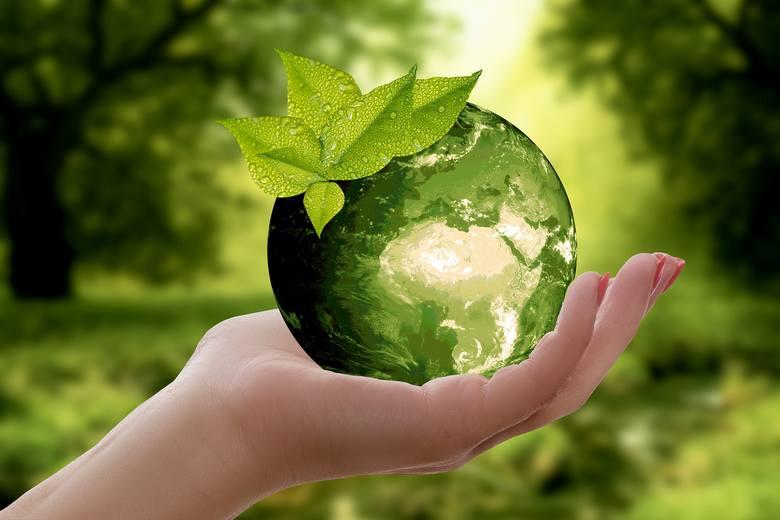 Konferencja Marzyciele Recyklingu odbędzie się w gorzowskiej książnicy.