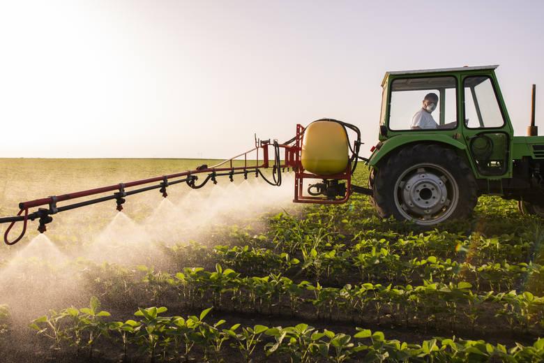 Tym jedzeniem niszczysz naszą planetę. Drobna zmiana diety robi ogromną różnicę. Czego unikać?