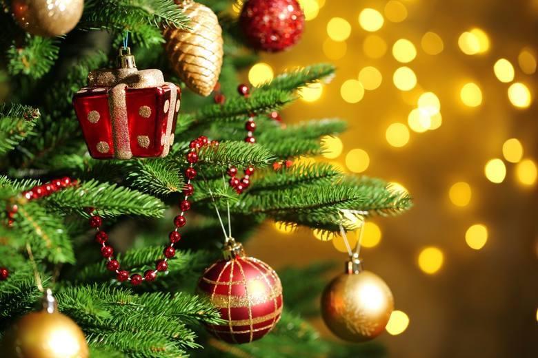 Niedługo Boże Narodzenie. Jaką choinkę wybrać i jak ją ozdobić? Czy musimy szykować się na duże wydatki? Sprawdź!Przejdź dalej --->