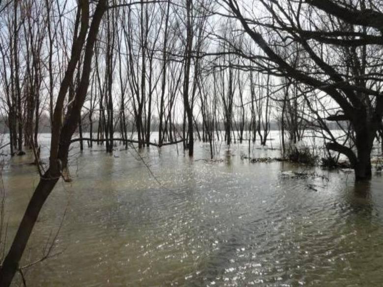Grozi nam powódź? Na razie nie ma powodów do niepokoju