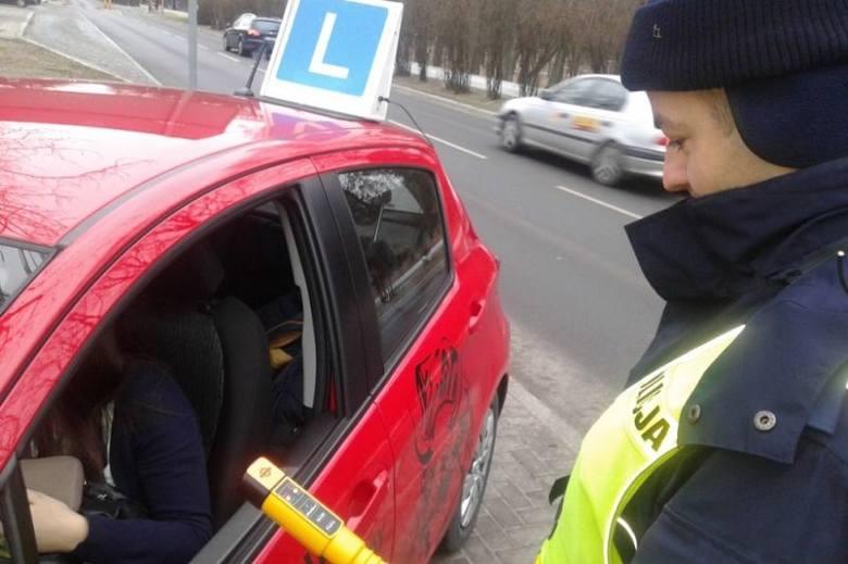 Policja kontrolowała elki (zdjęcia)
