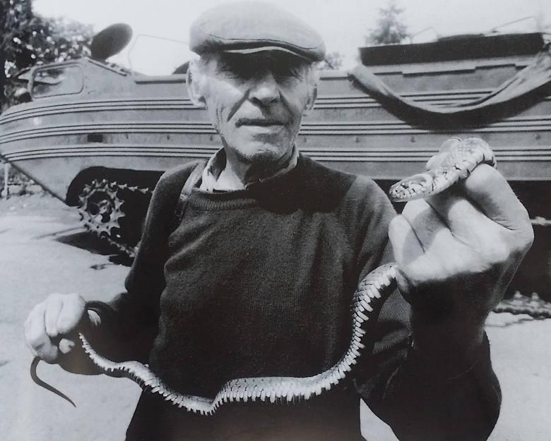 W Lubszy węże i żmije, uciekając przed wodą, chroniły się w ludzkich domach.