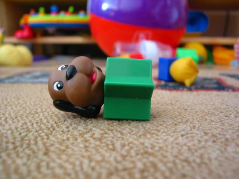 Dzieci kochają zabawki! A rodzice i bliscy kochają dawać dzieciom zabawki. Jednak często nie zdajemy sobie sprawy z tego, że niektóre oferty nie nadają