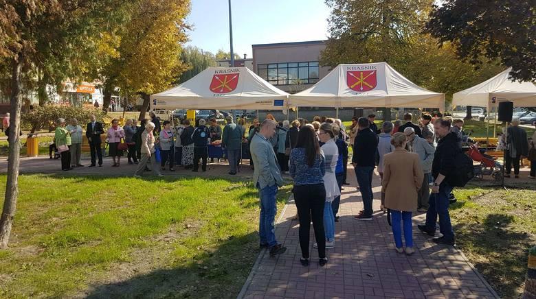 Park Różany powstał w Kraśniku. Ozdoba skweru i całego miasta (ZDJĘCIA)