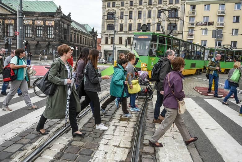 Protest przeciw wycince Puszczy białowieskiej