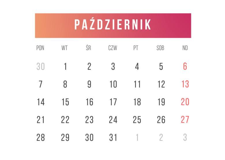 Kalendarz roku szkolnego 2020 TERMINY ferii zimowych, terminy świąt, dni wolne w szkole. Nowy kalendarz szkolny