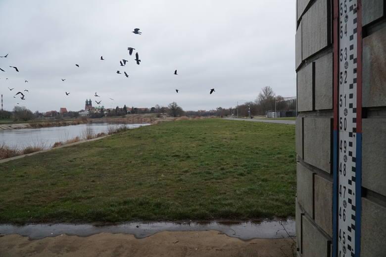 Skala deficytu wody pogłębia się z każdym rokiem. Każdego roku maleją ilości zasobów wód powierzchniowych i płytkich poziomów wodonośnych. Aktualny stan wody w Warcie na wodowskazie przy Moście Rocha wynosi 151 cm. Przed rokiem, dokładnie w tym samym miejscu odnotowano 294 cm.