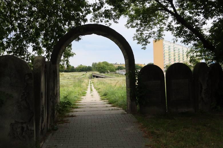 Spacerkiem po Kalinowszczyźnie. Zielona Kalina to dla wielu mieszkańców najpiękniejsza dzielnica Lublina. Zobaczcie zdjęcia