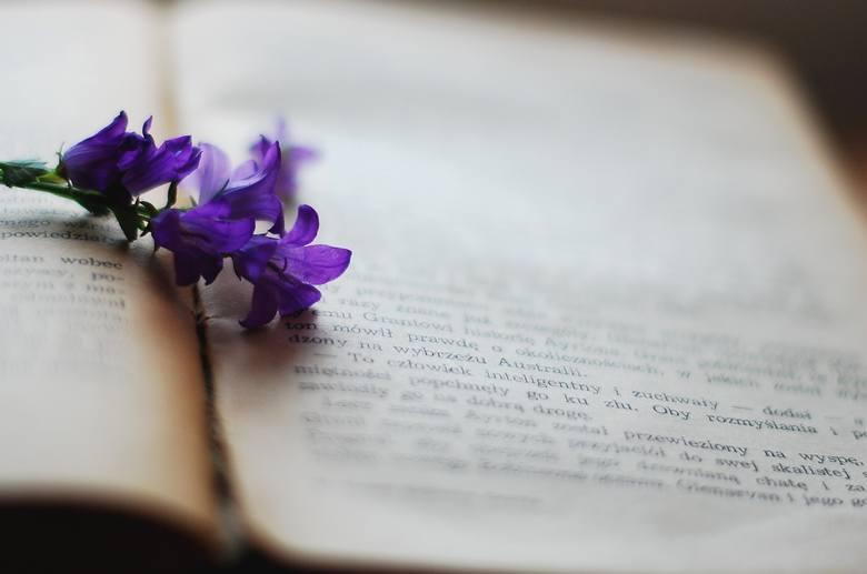 Co czytać pod gruszą? Polecamy książki na początek lata