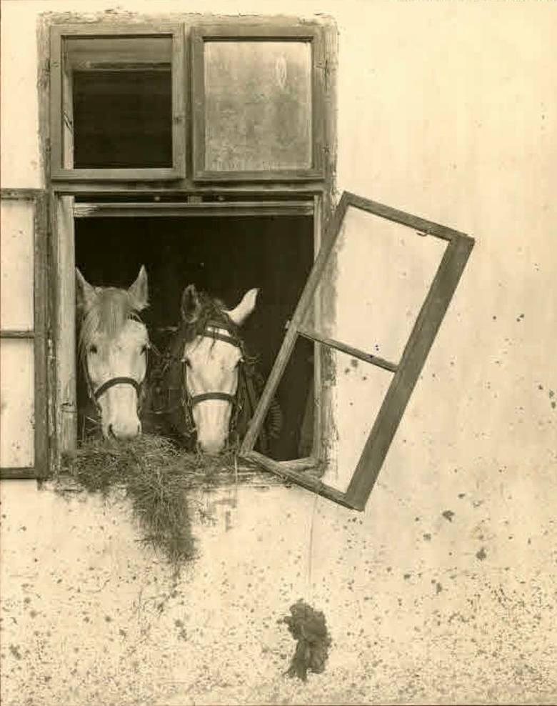 21. Lata 1914-1915, Koszary w Skierniewicach