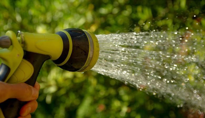 Gminy apelują o racjonalne korzystanie z wody. Trawnik powinien zaczekać