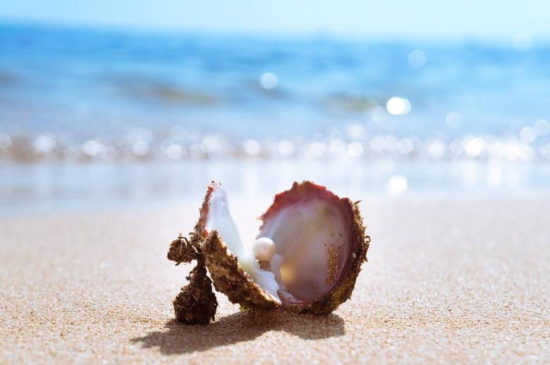 PerłyPerły, czyli wytwory małży, zbudowane są z tej samej substancji co wewnętrzna strona muszli. Można je znaleźć na całym świecie, aczkolwiek w wielu