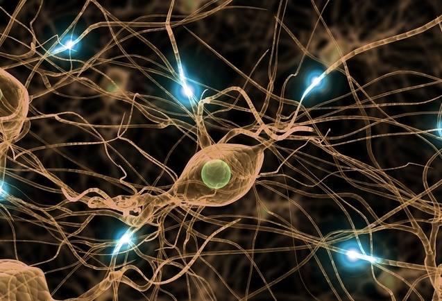 mózg, pamięć, stymulacja mózgu, neurostymulacja fal mózgowych, neurony, wnętrze mózgu
