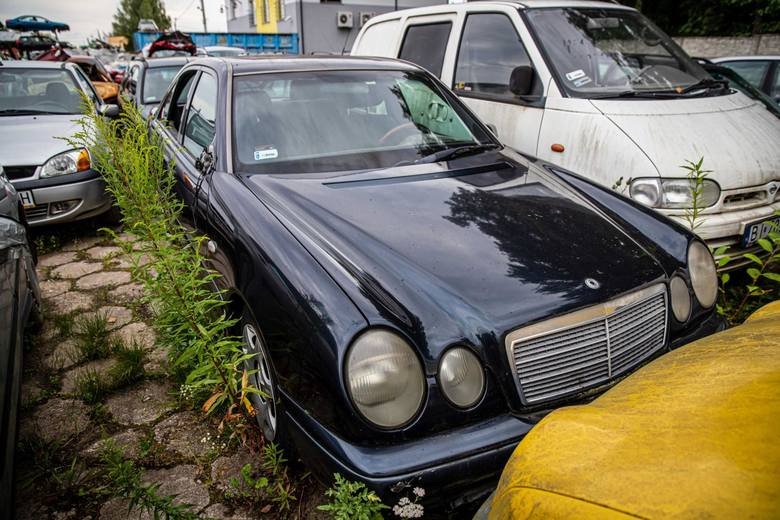 Takie auta można było kupić w ramach licytacji.