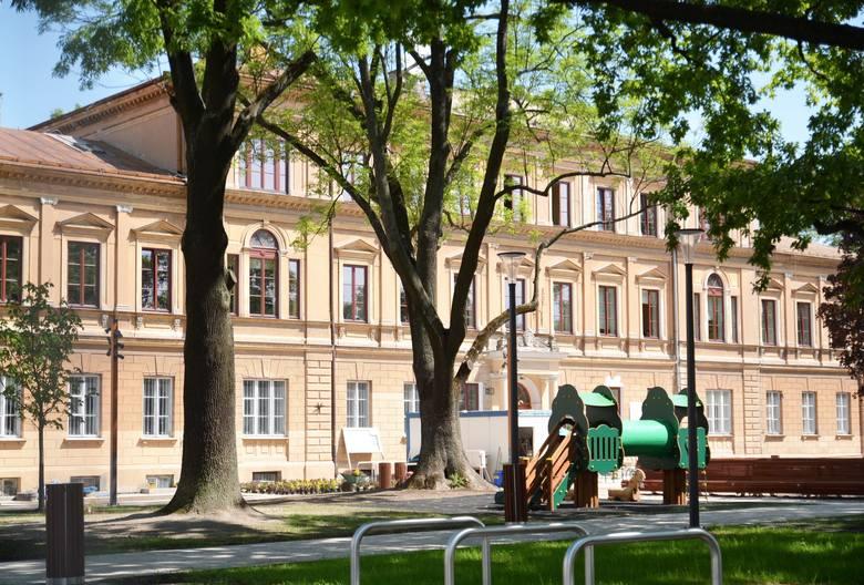 W czasie spaceru Rachwald pokazuje drzewa, które już teraz wydają się być w gorszej kondycji, na przykład dwa jesiony obok  gmachu Instytutu Psychologii UMCS.