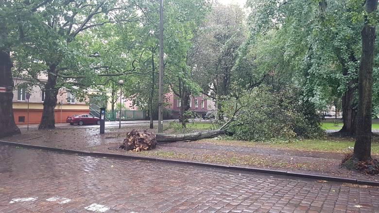 Silny wiatr i opady deszczu w Słupsku oraz regionie [zdjęcia]