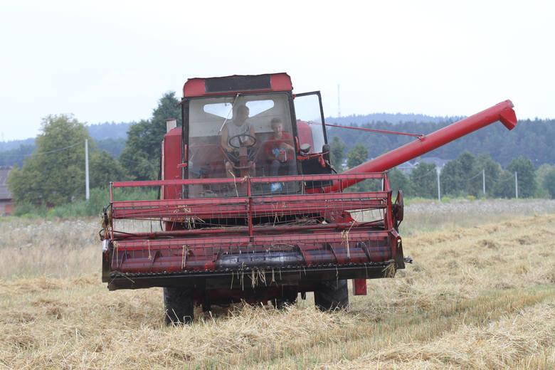 Rolnictwo: Późne żniwa przyniosą podwyżki cen