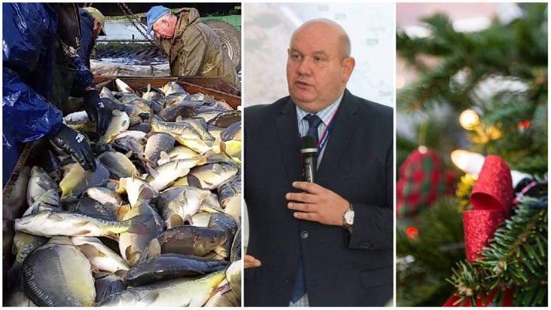 Agro wieści: protesty rolników i weterynarzy, kupujemy karpie i choinki