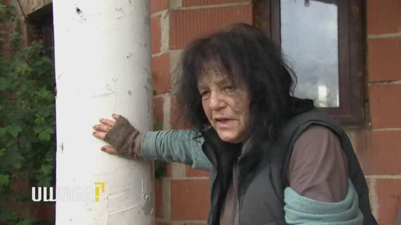 UWAGA! TVN 12.08 Znana malarka Bożena Wahl mieszka w zrujnowanym domu z 70 psami. Sytuacja jest dramatyczna
