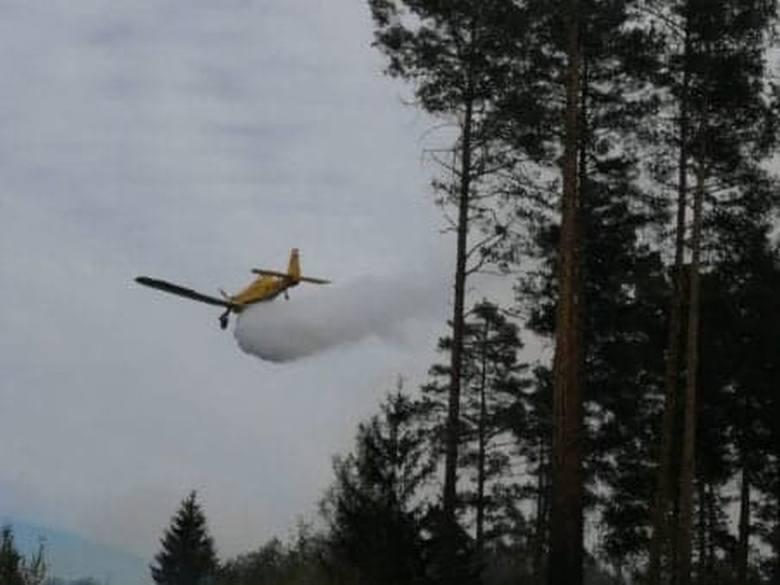 Znów pali się las w gminie Bliżyn. W akcji gaśniczej biorą udział samoloty [WIDEO, ZDJĘCIA]