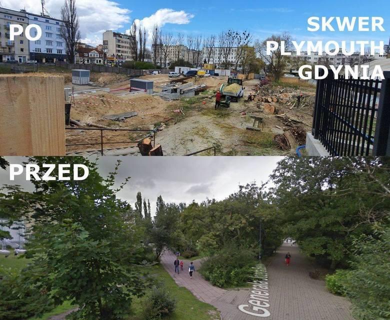 Projekt BO, który zakładał monitorowanie gdyńskich drzew wycofany.