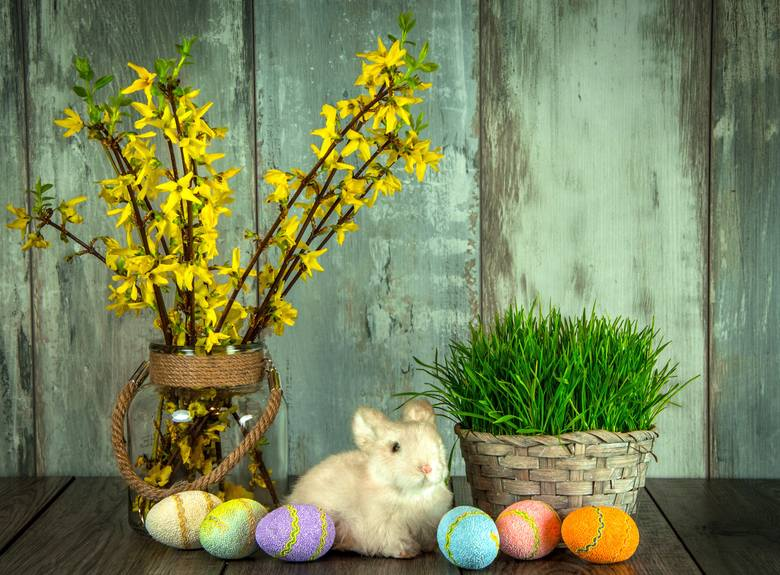 Przed nami Wielkanoc. Jeśli jeszcze nie zdążyliście wypisać kartek świątecznych lub idziecie z duchem czasu i życzenia wysyłacie drogą SMS-ową, mamy