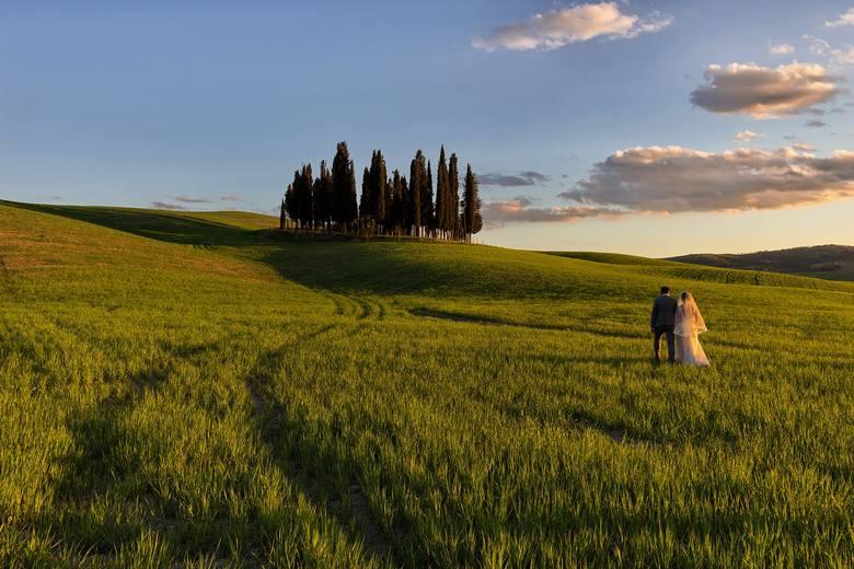 Piękny widok na zielone pola w Toskanii