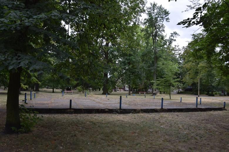 Park Odry w Nowej Soli