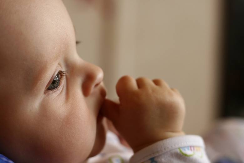 Nie tylko Afryka. Opolskie wychudzone i zaniedbane noworodki