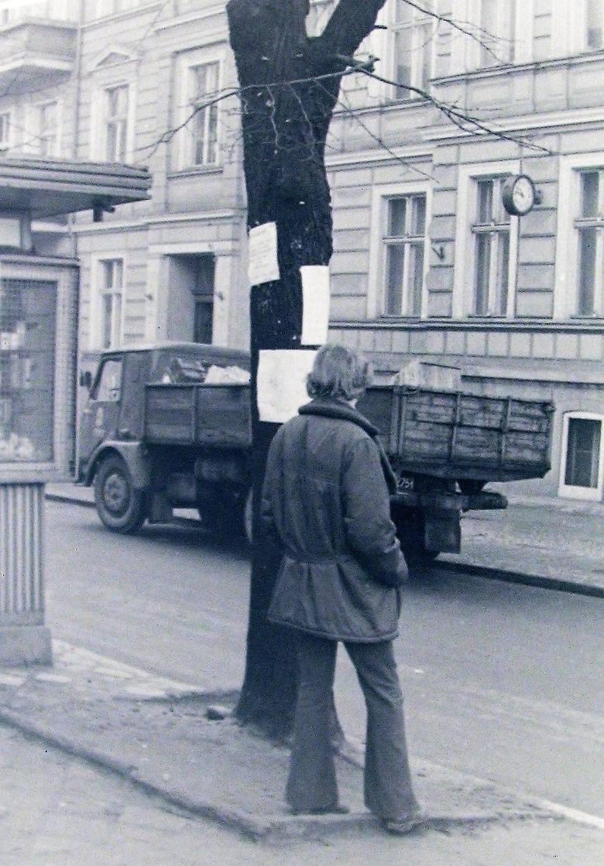 Początek 1973 roku, pnie starych lip jako słupy do przybijania plakatów o wiejskich zabawach