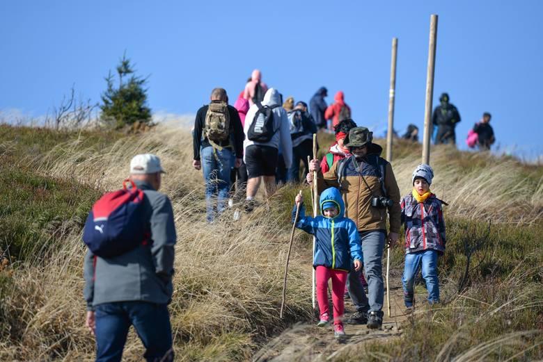 Nasz fotoreporter wybrał się w niedzielę w Bieszczady. Z Mucznego wyruszył żółtym szlakiem na Bukowe Berdo. Zobaczcie zdjęcia!