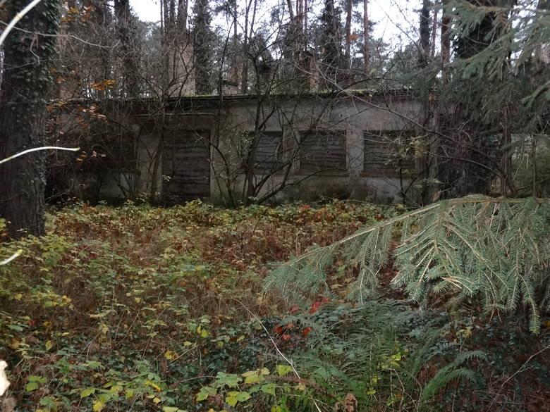 Dawny ośrodek kolonijny straszy na Ruczaju.