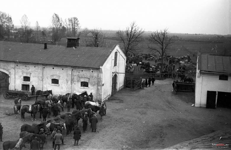 14. 1943 , Skierniewice