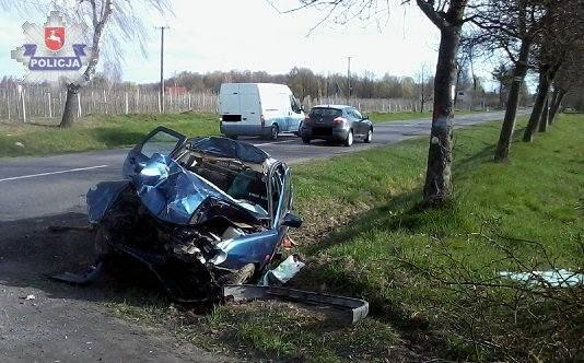 Łoś wbiegł pod koła auta. Kto kierował pojazdem?