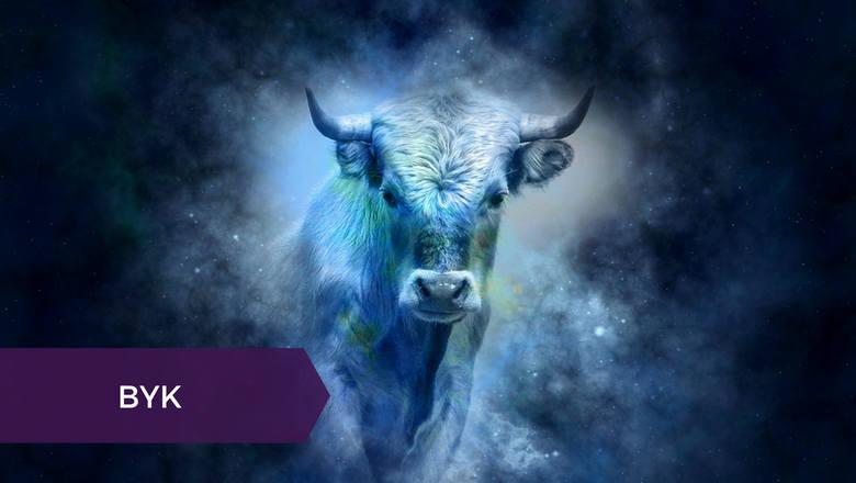 Byk (20 kwietnia - 20 maja)Co to będzie za jesień! Byki, które w ostatnim czasie miały na co narzekać, przeżyją katharsis, uwalniając się od negatywnych