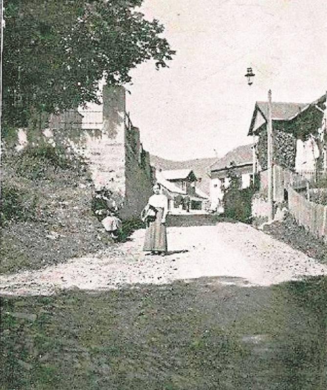 Rzemiosło, usługi i handel w XIX/XX wieku w galicyjskiej Mszanie Dolnej