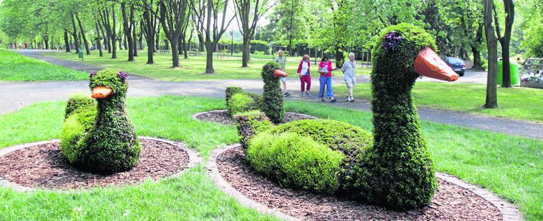 Z Parku Śląskiego zniknęły tabliczki, by nie deptać trawników. Można po nich spacerować