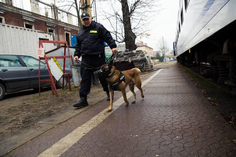 Policyjne psy szukały bomby na dworcu PKP w Białymstoku
