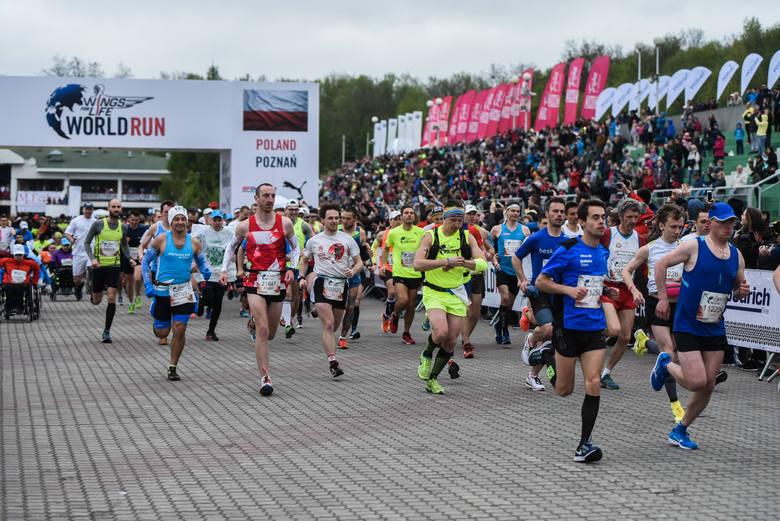 Wings for Life World Run - 5 maja (niedziela)To wyjątkowy bieg, bo odbywający się w różnych miejscach na świecie w tym samym terminie. Wings for Life