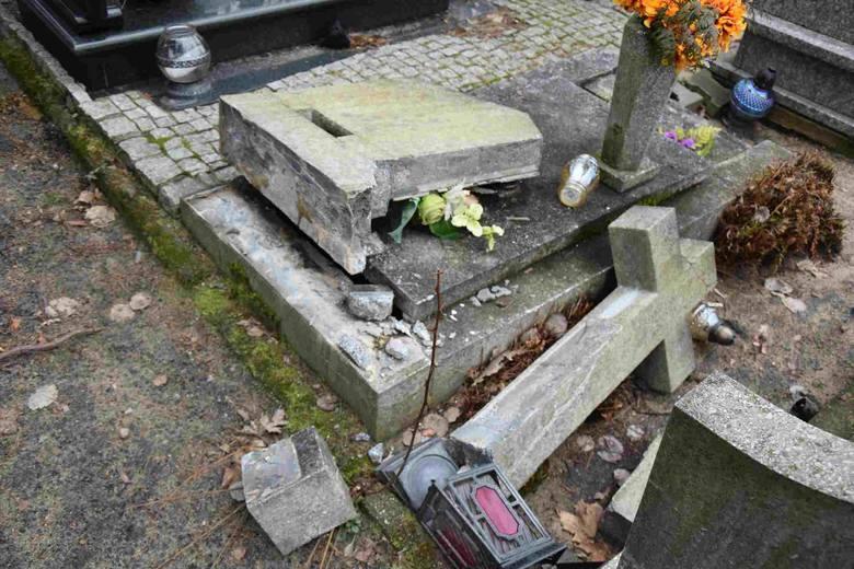Coraz częściej zdarza się, że dzikie zwierzęta dewastują zielonogórski cmentarz