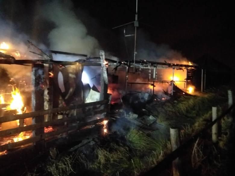Pożar obiektów rekreacyjnych we wsi Dębogórze 15.03.2021. Płonęło ranczo ze stadniną koni i mini ZOO
